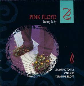 Pink Floyd: Learning To Fly - Cover