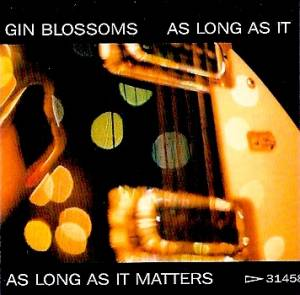 Cover - Gin Blossoms: As Long As It Matters