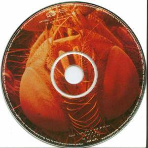 Alice In Chains: Jar Of Flies / Sap (2-Mini-CD / EP) - Bild 3