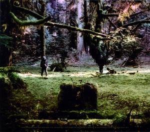 Wolves In The Throne Room: Celestial Lineage (CD) - Bild 2