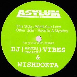 DJ Vibes & Wishdokta: Want Your Love / Rave Is A Mystery - Cover
