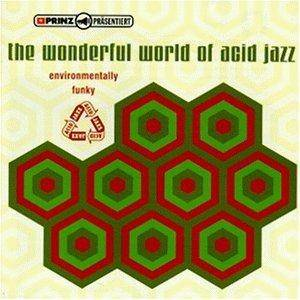 Cover - 't' And Da Flo': Wonderful World Of Acid Jazz, The