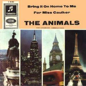 The Animals: Bring It On Home To Me - Cover