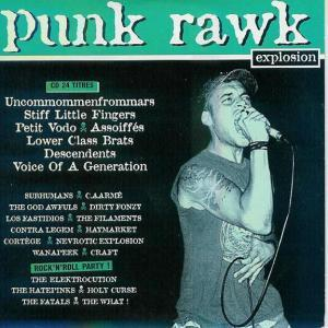 Rock Sound (F) - Punk Rawk Explosion Vol. 15 - Cover
