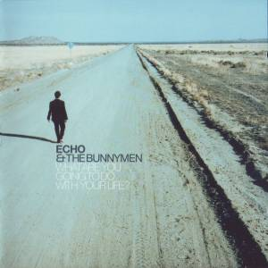 Cover - Echo & The Bunnymen: What Are You Going To Do With Your Life?