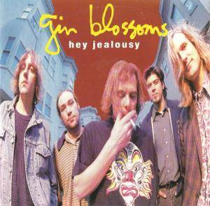Cover - Gin Blossoms: Hey Jealousy