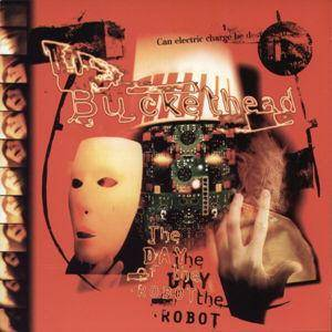 Cover - Buckethead: Day Of The Robot, The