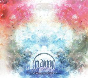 Nami: Fragile Alignments - Cover