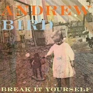 Cover - Andrew Bird: Break It Yourself