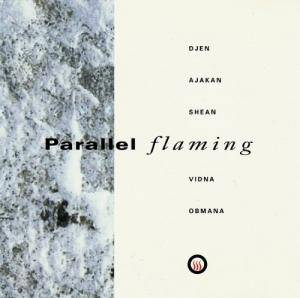vidnaObmana: Parallel Flaming - Cover