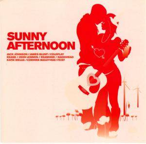 Sunny Afternoon - Cover