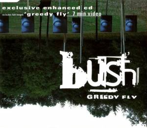 Bush: Greedy Fly - Cover