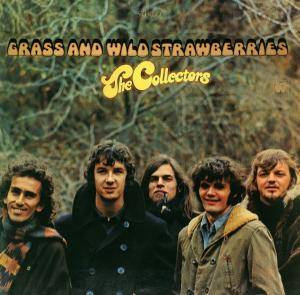 Cover - Collectors, The: Grass And Wild Strawberrys