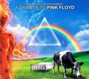 Cover - Steve Morse, Billy Sherwood: Collection Of Delicate Diamonds: A Tribute To Pink Floyd, A