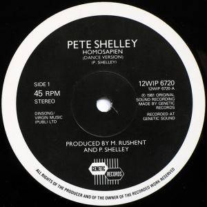 "Pete Shelley: Homosapien (12"") - Bild 3"