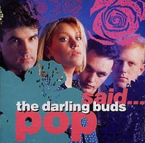 Cover - Darling Buds: Pop Said