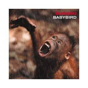 Cover - Babybird: Bugged