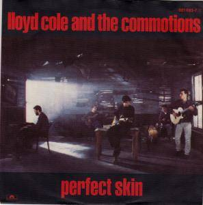 Cover - Lloyd Cole And The Commotions: Perfect Skin