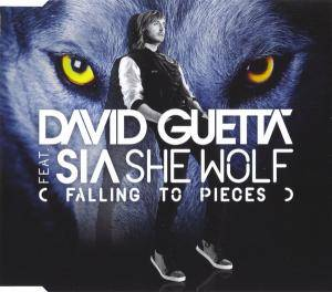Cover - David Guetta Feat. Sia: She Wolf (Falling To Pieces)