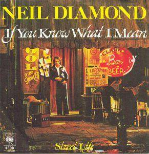 Neil Diamond: If You Know What I Mean - Cover