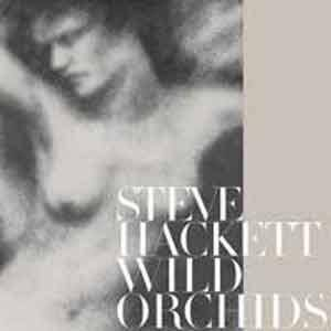 Steve Hackett: Wild Orchids - Cover