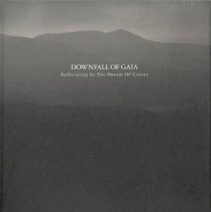 Downfall Of Gaia: Suffocating In The Swarm Of Cranes (CD) - Bild 1