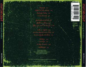 Counting Crows: Recovering The Satellites (CD) - Bild 3