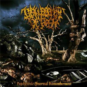 Cover - Disfigurement Of Flesh: Psychotonic Abnormal Dismemberment