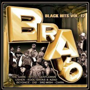 Cover - Terror Squad: Bravo Black Hits Vol. 12