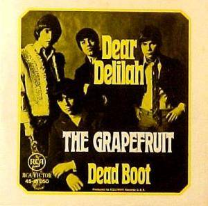 Cover - Grapefruit: Dear Delilah / Dead Boot