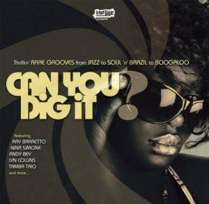 Cover - Houston Person: Brown Sugar Presents: Can You Dig It?