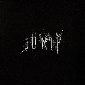 Junip: Junip - Cover