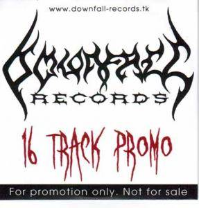 Downfall Records - 16 Track Promo - Cover