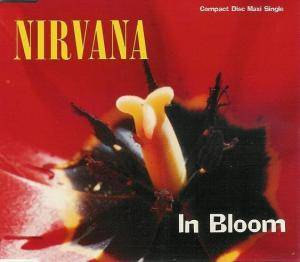 Nirvana: In Bloom - Cover