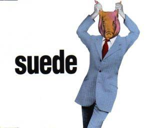 Suede: Animal Nitrate - Cover