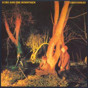 Cover - Echo & The Bunnymen: Crocodiles