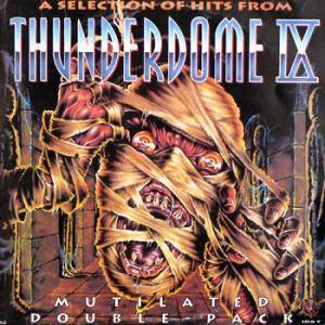 Cover - DJ Sim: Selection Of Hits From Thunderdome IX, A