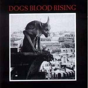 Current 93: Dogs Blood Rising - Cover