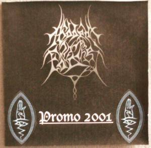 Cover - Hidden In The Fog: Promo 2001