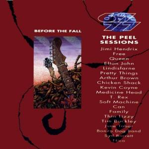 Before The Fall - The Peel Sessions - Cover