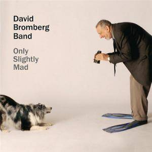 Cover - David Bromberg: Only Slightly Mad