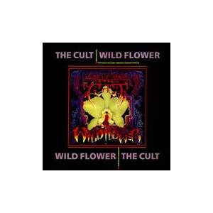 The Cult: Wild Flower - Cover