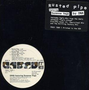 Cover - DNA Feat. Suzanne Vega: Rusted Pipe