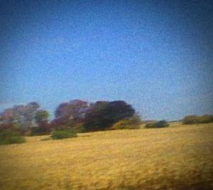 Sun Kil Moon: Benji - Cover