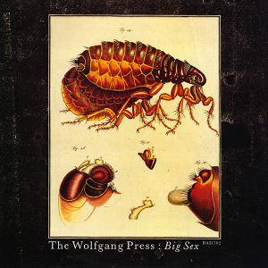 Cover - Wolfgang Press, The: Big Sex